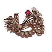 ANTIQUE EDWARDIAN 10K Gold, Glass Pearl & Ruby Sweetheart Pin/Brooch!