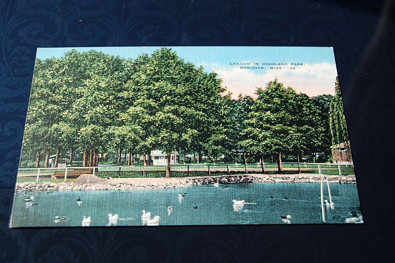 Lagoon In Highland Park Meridian Mississippi Postcard