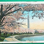 1930 Washington Monument & Cherry Blossoms Washington D. C.
