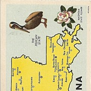 Vintage Louisiana State Post Card
