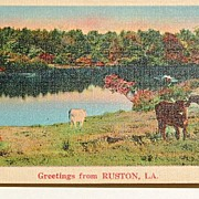 REDUCED Greetings From Ruston, La.  Postcard #43353