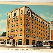 Vintage Postcard Evangeline Hotel Lafayette Louisiana