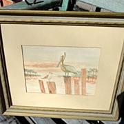 Vintage Framed Pelican Picture P. Watarman