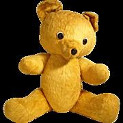 SALE Large German Hard Stuffed Boldfaced Teddy ca. 1930