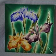 Enamel Iris Tray