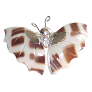 Butterfly Brooch made from Sea Shells
