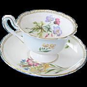 Shelley England Fine Bone Teacup & Saucer - Summer Glory Pattern