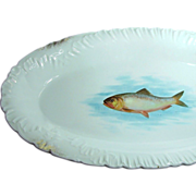 SALE Outstanding Gilded 18 In. FISH PLATTER by Bawo 'n Dotter Austria c.1898