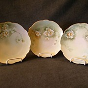 Set of 10 Limoges Hand-Painted Dessert Plates w/Daisy Floral Decoration