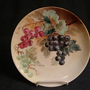 P.T. Bavaria Porcelain Hand Painted Cabinet Plate w/Grapes & Leaves Motif