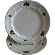 """Pair of Pountney & Allies """"Chelsea Grape"""" Pattern Ironstone Luncheon Plates"""