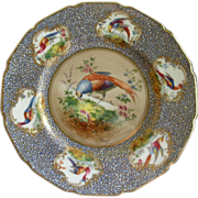 Royal Doulton H.P. 'Birds of Paradise' Cabinet Plate (1 of 6) Signed 'E Percy'