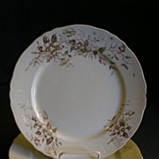 "J & G Meakin - Pair of  ""Flora"" Polychrome Dinner Plates"