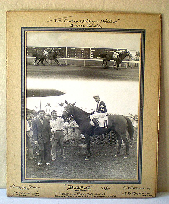 LARGE 1946 Race Horse Photo Buzfuz In Winner's Circle