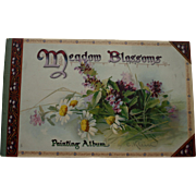 SALE Meadow Blossoms, Painting Album by C. Klein, Published by Raphael Tuck