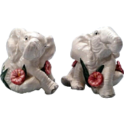 Whimsical Fitz and Floyd Elephant and Flowers Salt and Pepper Set