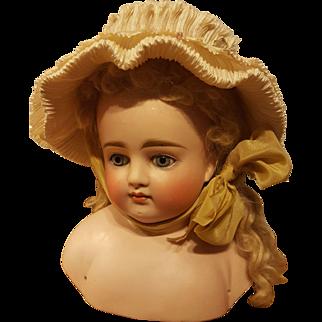 Large Kestner Shoulderhead, Bonnet & Wig, Absolutely Gorgeous!
