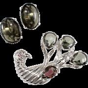 Schiaparelli Peacock Bird Rhinestone Brooch Earrings Set