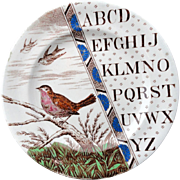 SALE Outstanding Staffordshire Plate ~ ABC ROBIN ~ 1880