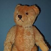 """SOLD 9"""" Steiff Golden Mohair Teddy Bear, """"Rudy"""""""
