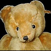 Vintage Mohair Character Teddy Bear
