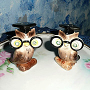 Set of Smart Owls Salt and Pepper Shakers