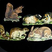 Victorian Diecuts,  4 Sm. Mammals, Chromolithos, Embossed 1880s