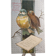 Vintage Postcard, Birthday with Pair of Bluebirds, Embossed
