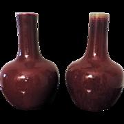 Pair Chinese Porcelain Oxblood Glazed Bottle Shaped Vases 19th century