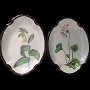 Pair Antique Early 19th c. English Swansea Botanical Creamware Quatrefoil Shaped Dishes