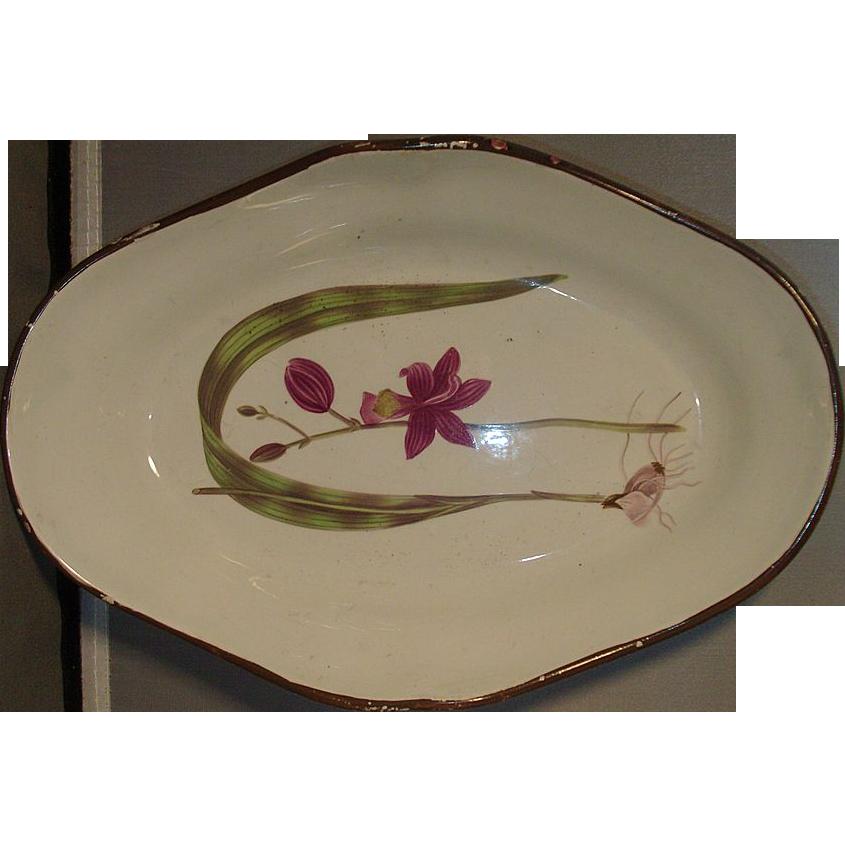 Late 18th c. Shorthose Botanical Pearlware Dessert Dish c. 1800