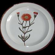 A Fine Early 19th century Shorthose English Creamware Botanical Plate