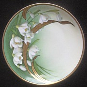 """Tirschenreuth (Bavarian) 8 3/4"""" Display Plate, Beautiful Background Transfer of Gladiolas with Handpainted Floral Accents and Leaves, Heavy Gold, 1903-1927"""