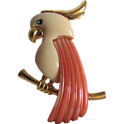 Mid Century Cockatoo Brooch with Faux Coral Lucite Inlaid