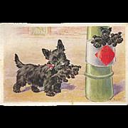 """""""Litter""""  (1934)"""