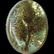 Vintage Retro 1950's Glitter Lucite Pin with Pine Cones