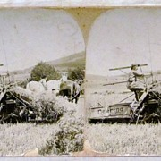c1900 Deering Harvester Company Ground Driven Reaper - Horse Farming Real Photo Stereo View -