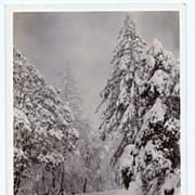 1930s Los Angeles, California San Antonio Canyon RPPC Real Photo Postcard - Mount Baldy - San