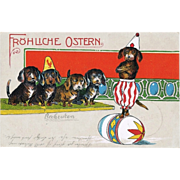 Old Easter Postcard with Sausage Dogs.