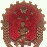 Chinese Sports Decoration. Winner. 1960s