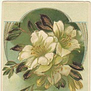 Embossed Art Nouveau Postcard with Flower Motif.