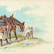 Gypsy with Horse and Dog. Litho Postcard 1903