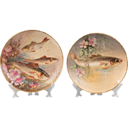 Pair of Limoges Flambeau Fish Plates, Drilled for Hanging