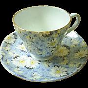 Shelley Blue Daisy chintz cup & saucer ~ Beauty!