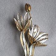 Fabulous Edwardian 800 Silver Filigree Flower Pin or Brooch