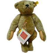 No. 2 Steiff Mohair Remake of the 1904 Original Teddy for Strong Museum 13 Inch