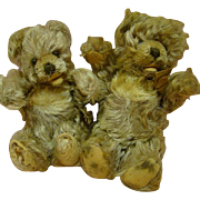 SALE Pair of German Steiff Zotty Bears with Signs of Affection