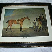 Old Borghese Framed Horse Art Eleanor By Andrew Cooper