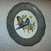 Metal Framed Birds Parrots On Porcelain