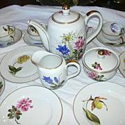 Selb Bavaria Tea Set Kutschenreuther Schlottenhof Hand Painted Flowers Set 12